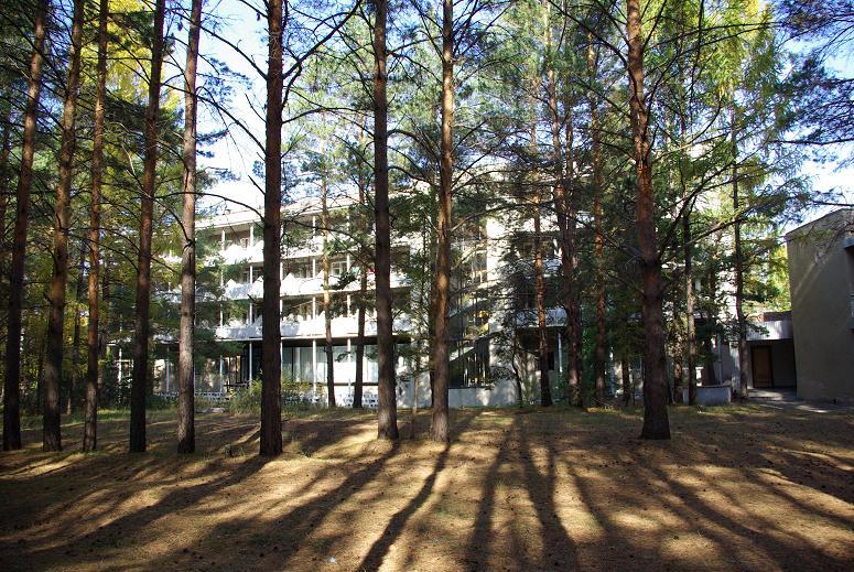 русский лес омск